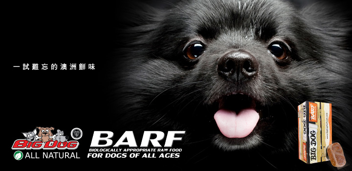 Big dog - Switch your pet's diet to BARF, changes occur.